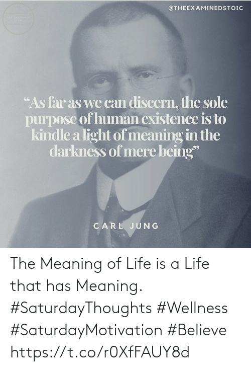 """Love for Quotes: @THEEXAMINEDSTOIC  """"As far as we can discern, the sole  purpose of human existence is to  kindle a light of meaning in the  darkness of mere being""""  CARL JUNG The Meaning of Life is a Life that has Meaning.  #SaturdayThoughts #Wellness  #SaturdayMotivation #Believe https://t.co/r0XfFAUY8d"""