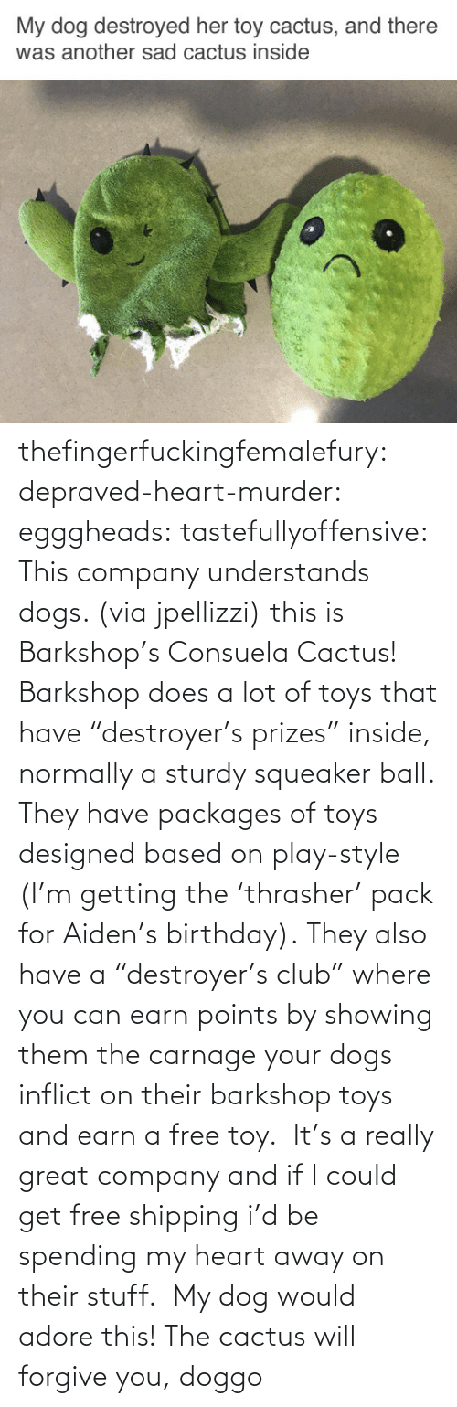 """packages: thefingerfuckingfemalefury:  depraved-heart-murder:  egggheads:  tastefullyoffensive: This company understands dogs. (via jpellizzi) this is Barkshop's Consuela Cactus! Barkshop does a lot of toys that have""""destroyer's prizes"""" inside, normally a sturdy squeaker ball. They have packages of toys designed based on play-style (I'm getting the'thrasher' pack for Aiden's birthday). They also have a""""destroyer's club"""" where you can earn points by showing them the carnage your dogs inflict on their barkshop toys and earn a free toy. It's a really great company and if I could get free shipping i'd be spending my heart away on their stuff.  My dog would adore this!  The cactus will forgive you, doggo"""