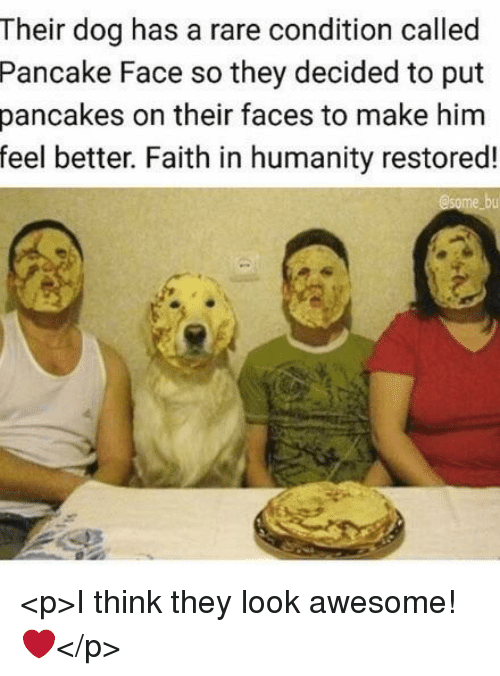 Humanity Restored: Their dog has a rare condition called  Pancake Face so they decided to put  pancakes on their faces to make him  feel better. Faith in humanity restored! <p>I think they look awesome! ❤️</p>