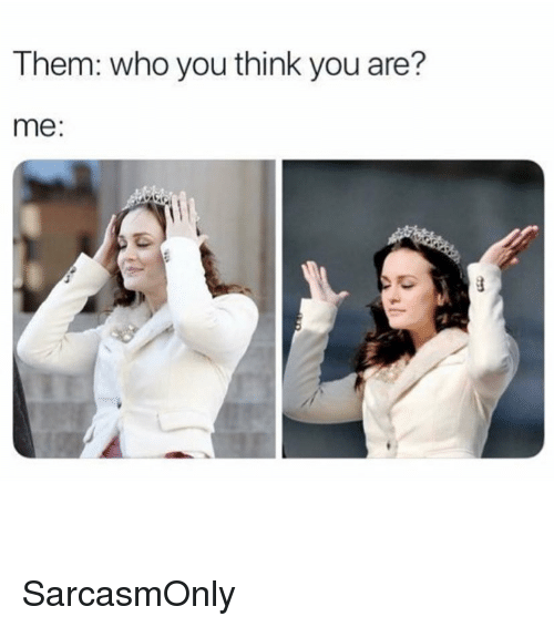 Funny, Memes, and Who: Them: who you think you are?  me: SarcasmOnly