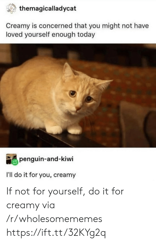 Penguin, Today, and Kiwi: themagicalladycat  Creamy is concerned that you might not have  loved yourself enough today  penguin-and-kiwi  I'll do it for you, creamy If not for yourself, do it for creamy via /r/wholesomememes https://ift.tt/32KYg2q