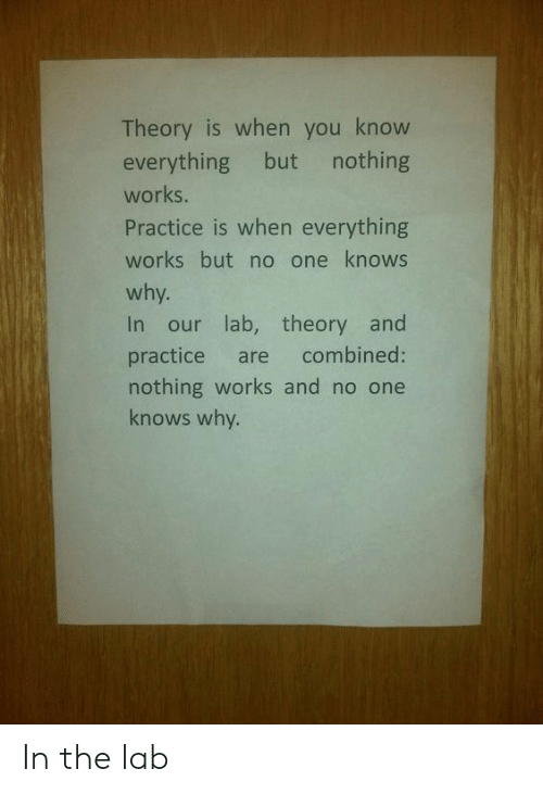 One, Why, and You: Theory is when you know  everything but nothing  works.  Practice is when everything  works but no one knows  why.  In our lab, theory and  practice are combined:  nothing works and no one  knows why. In the lab