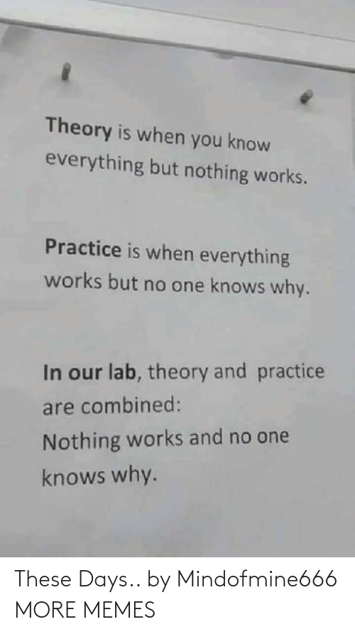 these days: Theory is when you know  everything but nothing works.  Practice is when everything  works but no one knows why.  In our lab, theory and practice  are combined:  Nothing works and no one  knows why. These Days.. by Mindofmine666 MORE MEMES