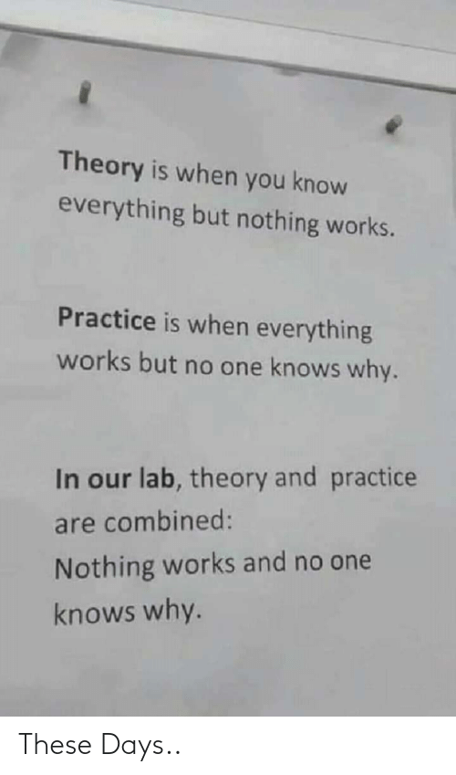 these days: Theory is when you know  everything but nothing works.  Practice is when everything  works but no one knows why.  In our lab, theory and practice  are combined:  Nothing works and no one  knows why. These Days..