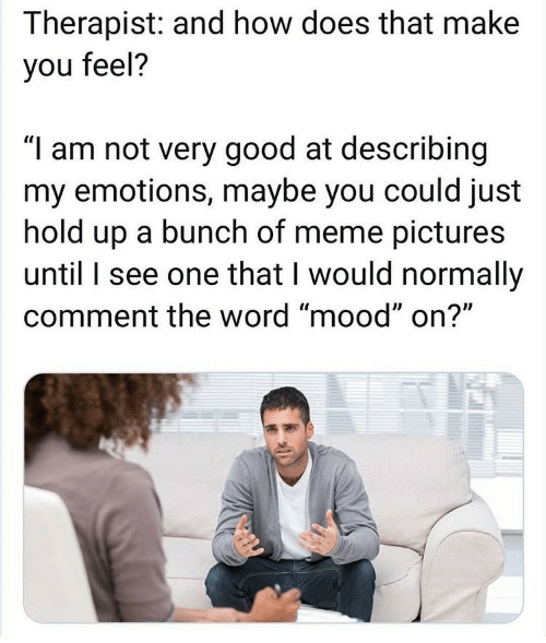 """therapist: Therapist: and how does that make  you feel?  """"I am not very good at describing  my emotions, maybe you could just  hold up a bunch of meme pictures  until I see one that I would normally  comment the word """"mood"""" on?"""""""