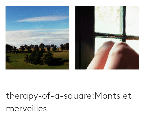 Square: therapy-of-a-square:Monts et merveilles