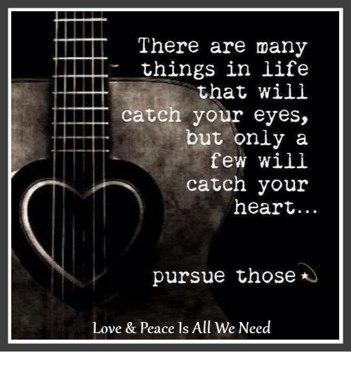 Life, Love, and Memes: There are many  - things in life  that will  catch your eyes,  but only a  few will  catch your  heart...  pursue those  Love & Peace ls All We Need