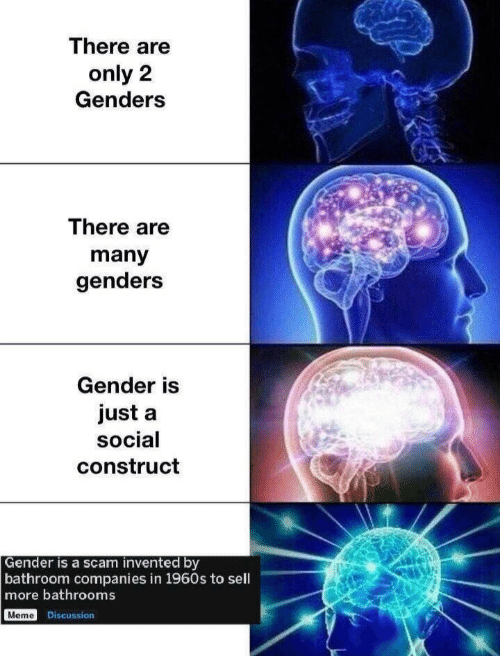 Genders: There are  only 2  Genders  There are  many  genders  Gender is  just a  social  construct  Gender is a scam invented by  bathroom companies in 1960s to sell  more bathrooms  Meme Discussion