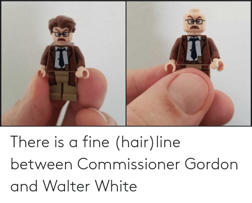 Hair: There is a fine (hair)line between Commissioner Gordon and Walter White