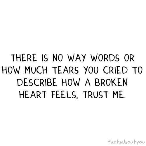 Heart, How, and Words: THERE IS NO WAY WORDS OR  HOW MUCH TEARS YOU CRIED TO  DESCRIBE HOW A BROKEN  HEART FEELS, TRUST ME  factsaboutyou
