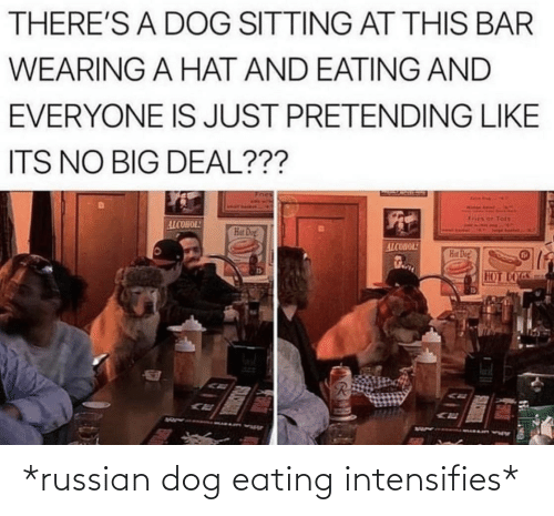 Wearing: THERE'S A DOG SITTING AT THIS BAR  WEARING A HAT AND EATING AND  EVERYONE IS JUST PRETENDING LIKE  ITS NO BIG DEAL???  Tots  ALCOHOL!  Hat Dog!  ALCOHOL!  Hat Dog  HOT DOGS *russian dog eating intensifies*