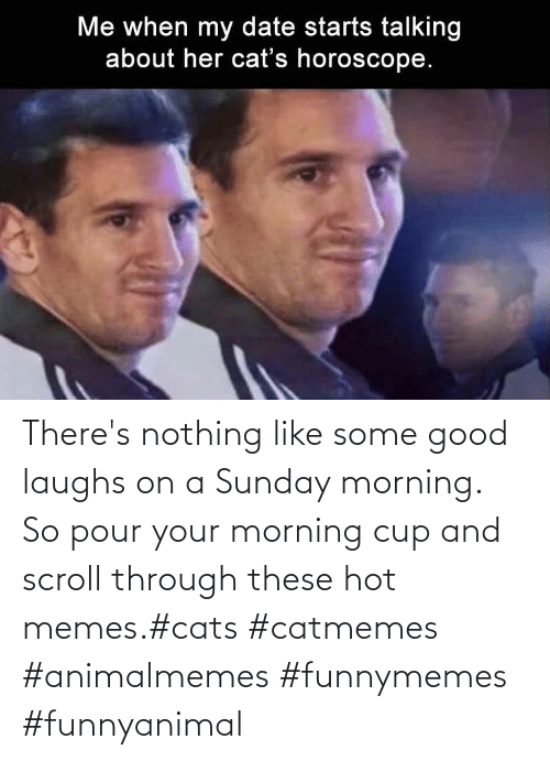 Scroll: There's nothing like some good laughs on a Sunday morning.  So pour your morning cup and scroll through these hot memes.#cats #catmemes #animalmemes #funnymemes #funnyanimal