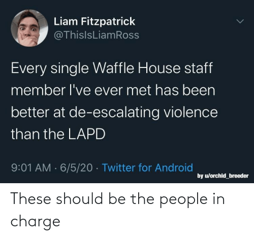 Should: These should be the people in charge