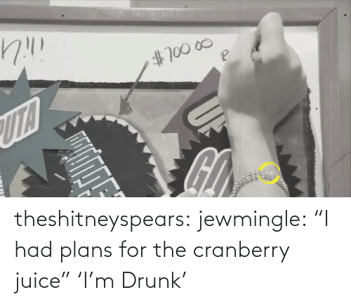 """Drunk: theshitneyspears:  jewmingle:  """"I had plans for the cranberry juice""""  'I'm Drunk'"""