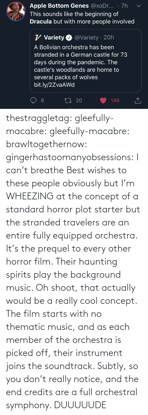 tumblr: thestraggletag:  gleefully-macabre:  gleefully-macabre:   brawltogethernow:  gingerhastoomanyobsessions: I can't breathe Best wishes to these people obviously but I'm WHEEZING at the concept of a standard horror plot starter but the stranded travelers are an entire fully equipped orchestra.    It's the prequel to every other horror film. Their haunting spirits play the background music.     Oh shoot, that actually would be a really cool concept. The film starts with no thematic music, and as each member of the orchestra is picked off, their instrument joins the soundtrack. Subtly, so you don't really notice, and the end credits are a full orchestral symphony.   DUUUUUDE