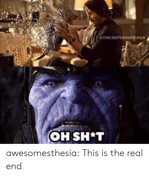 Tumblr, Blog, and The Real: THESUPERHERO.HUB  OH SH*T awesomesthesia:  This is the real end