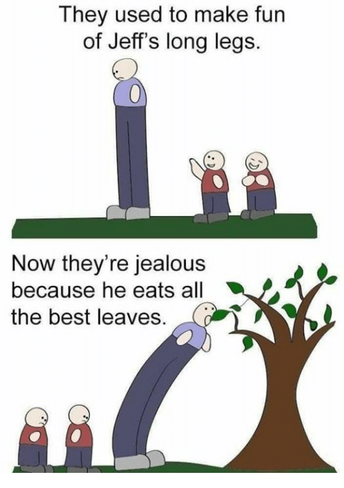 Long Legs: They used to make fun  of Jeff's long legs.  Now they're jealous  because he eats all  the best leaves.