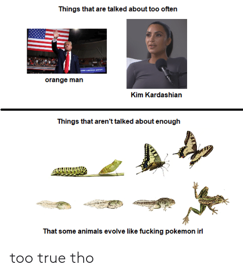 Animals, Fucking, and Kim Kardashian: Things that are talked about too often  orange man  Kim Kardashian  Things that aren't talked about enough  That some animals evolve like fucking pokemon irl too true tho