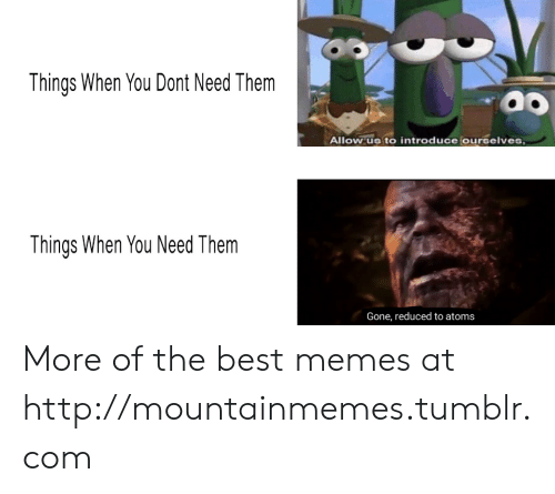 Memes, Tumblr, and Best: Things When You Dont Need Them  Allow us to introduce ourelves  Things When You Need Them  Gone, reduced to atoms More of the best memes at http://mountainmemes.tumblr.com