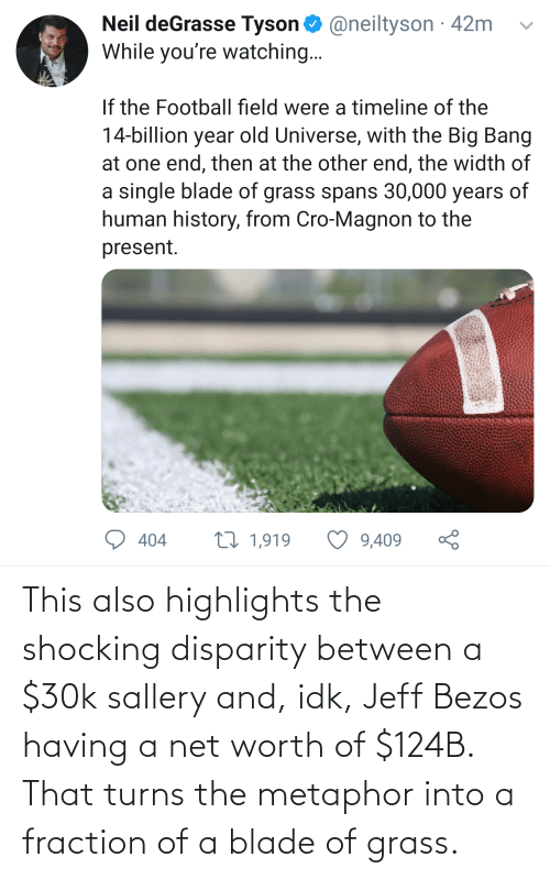 Net Worth: This also highlights the shocking disparity between a $30k sallery and, idk, Jeff Bezos having a net worth of $124B. That turns the metaphor into a fraction of a blade of grass.