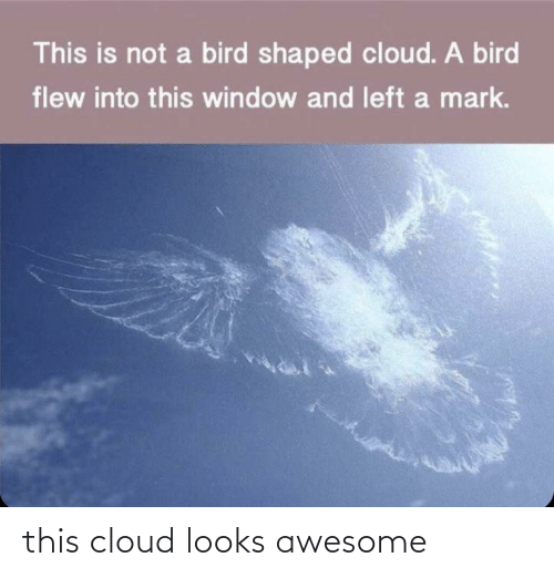 Cloud: this cloud looks awesome