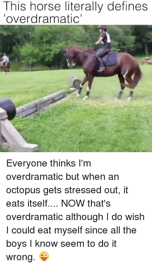 Seemes: This horse literally defines  overdramatic' Everyone thinks I'm overdramatic but when an octopus gets stressed out, it eats itself.... NOW that's overdramatic although I do wish I could eat myself since all the boys I know seem to do it wrong. 😜