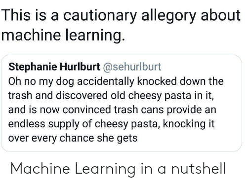 pasta: This is a cautionary allegory about  machine learning.  Stephanie Hurlburt @sehurlburt  Oh no my dog accidentally knocked down the  trash and discovered old cheesy pasta in it,  and is now convinced trash cans provide an  endless supply of cheesy pasta, knocking it  over every chance she gets Machine Learning in a nutshell