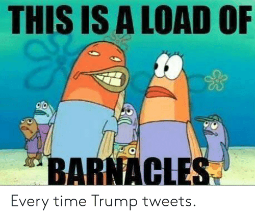 This Is A Load Of Barnacles: THIS IS A LOAD OF  BARNACLES Every time Trump tweets.