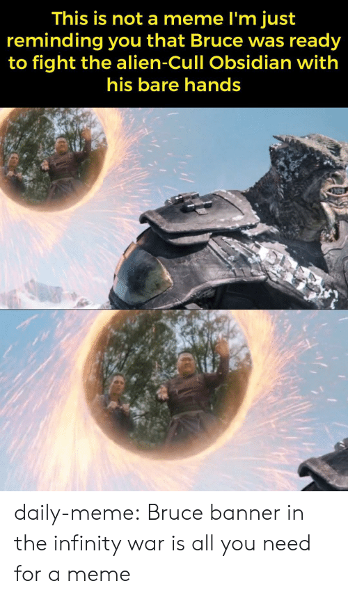 Meme, Tumblr, and Alien: This is not a meme l'm just  reminding you that Bruce was ready  to fight the alien-Cull Obsidian with  his bare hands daily-meme:  Bruce banner in the infinity war is all you need for a meme