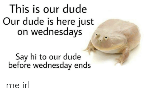 Dude, Wednesday, and Irl: This is our dude  Our dude is here just  on wednesdays  Say hi to our dude  before wednesday ends me irl