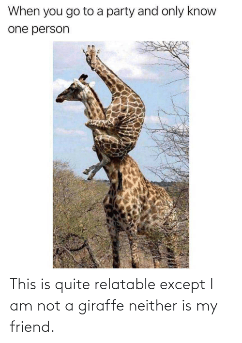 except: This is quite relatable except I am not a giraffe neither is my friend.