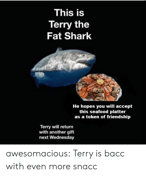 Wednesday: This is  Terry the  Fat Shark  He hopes you will accept  this seafood platter  as a token of friendship  Terry will return  with another gift  next Wednesday awesomacious:  Terry is bacc with even more snacc