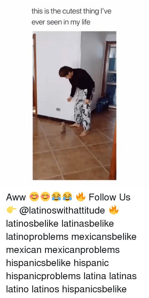 Aww, Latinos, and Life: this is the cutest thing I've  ever seen in my life Aww 😊😊😂😂 🔥 Follow Us 👉 @latinoswithattitude 🔥 latinosbelike latinasbelike latinoproblems mexicansbelike mexican mexicanproblems hispanicsbelike hispanic hispanicproblems latina latinas latino latinos hispanicsbelike