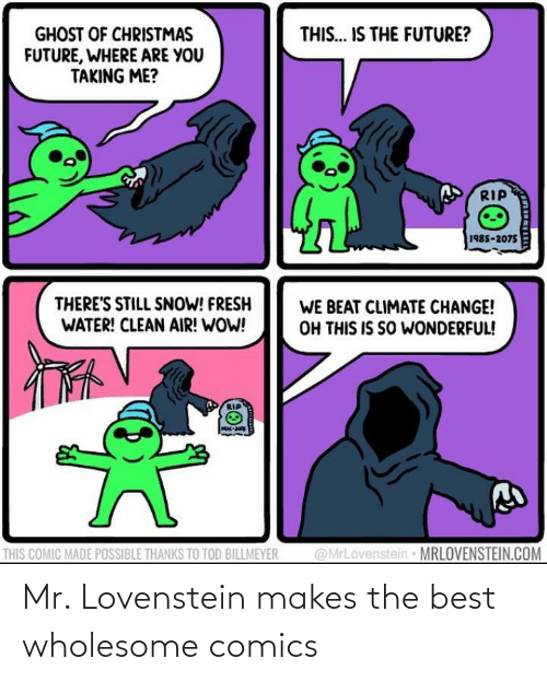 clean: THIS... IS THE FUTURE?  GHOST OF CHRISTMAS  FUTURE, WHERE ARE YOU  TAKING ME?  RIP  1985-2075  THERE'S STILL SNOW! FRESH  WATER! CLEAN AIR! WOW!  WE BEAT CLIMATE CHANGE!  OH THIS IS SO WONDERFUL!  @MrLovenstein MRLOVENSTEIN.COM  THIS COMIC MADE POSSIBLE THANKS TO TOD BILLMEYER Mr. Lovenstein makes the best wholesome comics