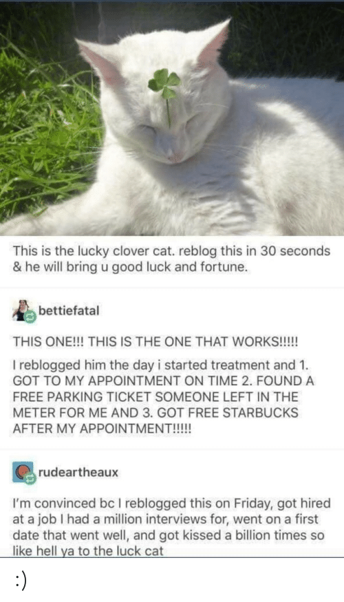 good luck: This is the lucky clover cat. reblog this in 30 seconds  & he will bring u good luck and fortune.  bettiefatal  THIS ONE!!! THIS IS THE ONE THAT WORKS!!!!  I reblogged him the day i started treatment and 1.  GOT TO MY APPOINTMENT ON TIME 2. FOUND A  FREE PARKING TICKET SOMEONE LEFT IN THE  METER FOR ME AND 3. GOT FREE STARBUCKS  AFTER MY APPOINTMENT!!!!!  rudeartheaux  I'm convinced bc I reblogged this on Friday, got hired  at a job I had a million interviews for, went on a first  date that went well, and got kissed a billion times so  like hell ya to the luck cat :)