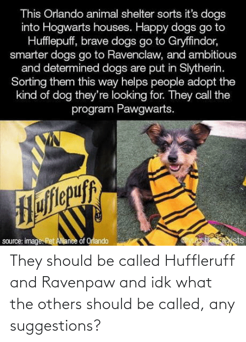 Animal: This Orlando animal shelter sorts it's dogs  into Hogwarts houses. Happy dogs go to  Hufflepuff, brave dogs go to Gryffindor,  smarter dogs go to Ravenclaw, and ambitious  and determined dogs are put in Slytherin.  Sorting them this way helps people adopt the  kind of dog they're looking for. They call the  program Pawgwarts.  Hofitepuf  source: image. Pet Allance of Orlando  ists They should be called Huffleruff and Ravenpaw and idk what the others should be called, any suggestions?