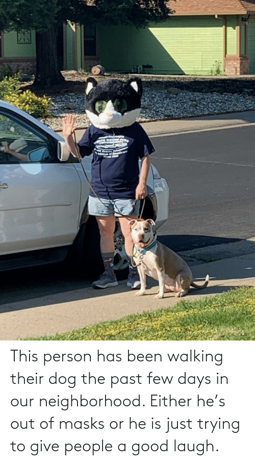 Few: This person has been walking their dog the past few days in our neighborhood. Either he's out of masks or he is just trying to give people a good laugh.