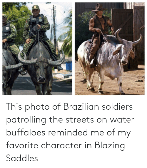 my favorite: This photo of Brazilian soldiers patrolling the streets on water buffaloes reminded me of my favorite character in Blazing Saddles