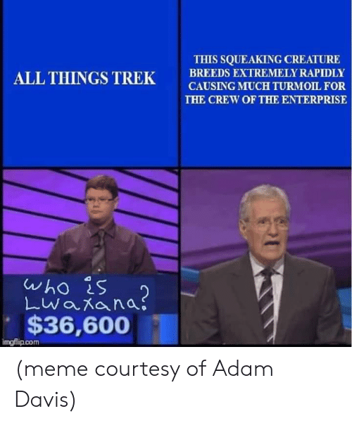 Meme, Memes, and Enterprise: THIS SQUEAKING CREATURE  BREEDS EXTREMELY RAPIDLY  CAUSING MUCH TURMOIL  THE CREW OF THE ENTERPRISE  ALL THINGS TREKSRNOLT.FOR  who is  $36,600  imgflip.com (meme courtesy of Adam Davis)