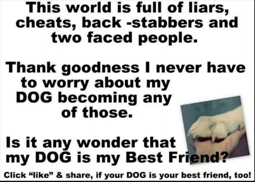 """Two Faced People: This world is full of liars,  cheats, back -stabbers and  two faced people.  Thank goodness I never have  to worry about my  DOG becoming any  of those.  Is it any wonder that  my DOG is my Best Friend?  Click """"like"""" & share, if your DOG is your best friend, too!"""