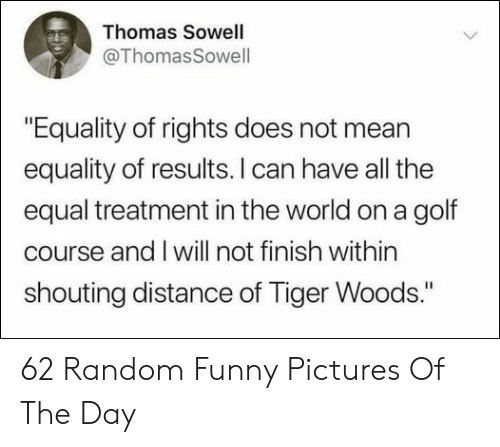 """Funny, Tiger Woods, and Golf: Thomas Sowell  @ThomasSowell  """"Equality of rights does not mean  equality of results. I can have all the  equal treatment in the world on a golf  course and I will not finish within  shouting distance of Tiger Woods."""" 62 Random Funny Pictures Of The Day"""