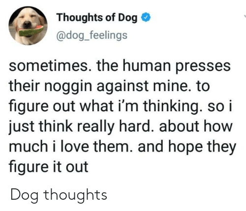 human: Thoughts of Dog  @dog_feelings  sometimes. the human presses  their noggin against mine. to  figure out what i'm thinking. so i  just think really hard. about how  much i love them. and hope they  figure it out Dog thoughts
