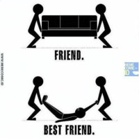 best friend meme