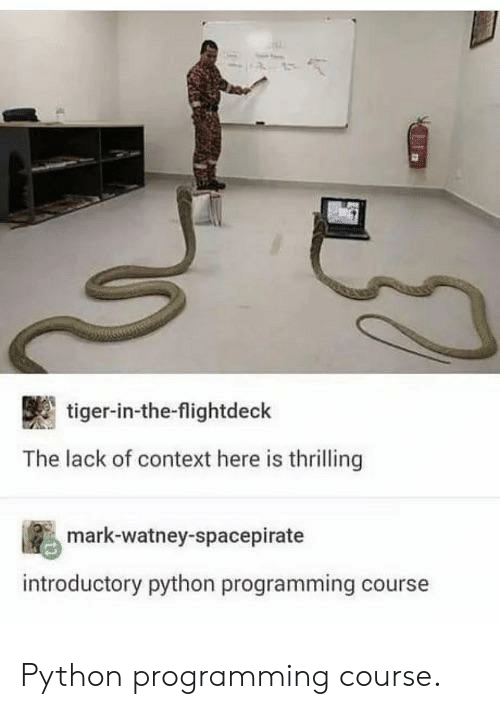 Tiger, Programming, and Python: tiger-in-the-flightdeck  The lack of context here is thrilling  mark-watney-spacepirate  introductory python programming course Python programming course.
