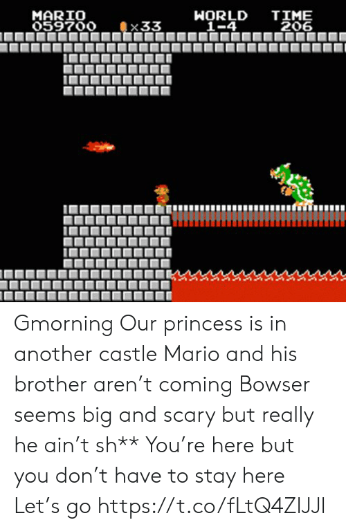 Mario: TIME  206  MARIO  059700  WORLD  _1-4  33 Gmorning  Our princess is in another castle Mario and his brother aren't coming Bowser seems big and scary but really he ain't sh** You're here but you don't have to stay here Let's go https://t.co/fLtQ4ZlJJl