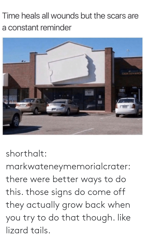 To Do: Time heals all wounds but the scars are  a constant reminder  SYRMT A  CASH ADVANCE  17.0 shorthalt: markwateneymemorialcrater:  there were better ways to do this. those signs do come off   they actually grow back when you try to do that though. like lizard tails.