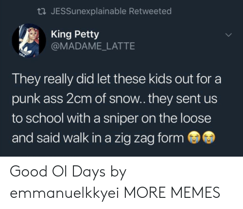 Punk Ass: tl JESSunexplainable Retweeted  King Petty  @MADAME_LATTE  They really did let these kids out for a  punk ass 2cm of snow.. they sent us  to school with a sniper on the loose  and said walk in a zig zag form Good Ol Days by emmanuelkkyei MORE MEMES