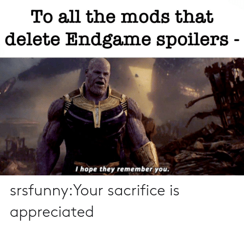 Tumblr, Blog, and Hope: To all the mods that  delete Endgame spoilers  I hope they remember you. srsfunny:Your sacrifice is appreciated