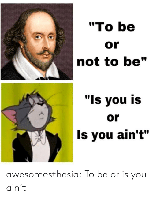 "Tumblr, Blog, and Com: ""To be  or  not to be""  ""Is you is  or  Is you ain't"" awesomesthesia:  To be or is you ain't"