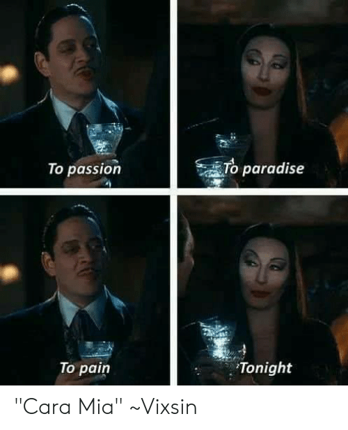 "Memes, Paradise, and Pain: To paradise  To passion  Tonight  To pain ""Cara Mia""  ~Vixsin"